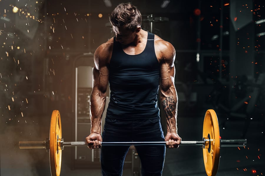 successful body building training